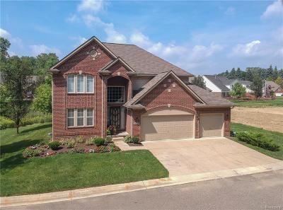 Southfield Single Family Home For Sale: 24693 Pembrooke Drive