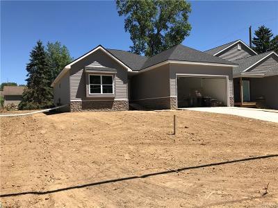 Auburn Hills Single Family Home For Sale: 343 Alpeana Street