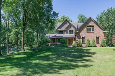 Brandon Twp Single Family Home For Sale: 1368 Perry Lake Road