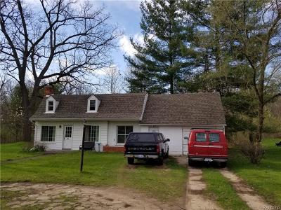Southfield Single Family Home For Sale: 21290 McClung Avenue