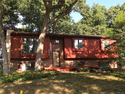 Brighton Single Family Home For Sale: 1518 Whispering Oaks Drive