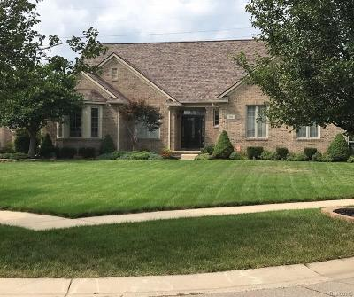 Canton, Canton Twp Single Family Home For Sale: 366 E Canford Park