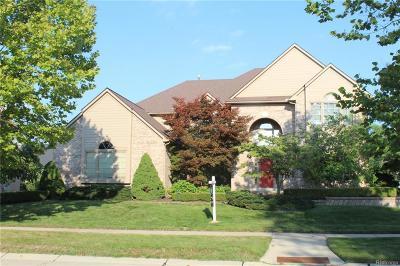 Novi MI Single Family Home For Sale: $550,000