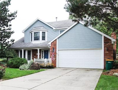 Novi Single Family Home For Sale: 44719 Midway Drive