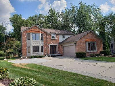 Clinton Twp Single Family Home For Sale: 20380 Drummond Bay