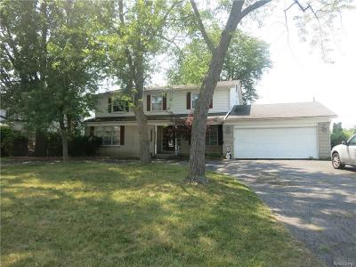 Southfield Single Family Home For Sale: 28645 Brooks Lane