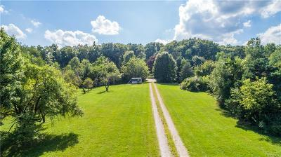 Clarkston, Waterford, Waterford Twp, Holly Twp Commercial Lots & Land For Sale: 11610 Dixie Highway