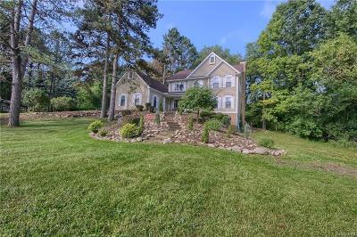 Milford Single Family Home For Sale: 873 Jordan Lane