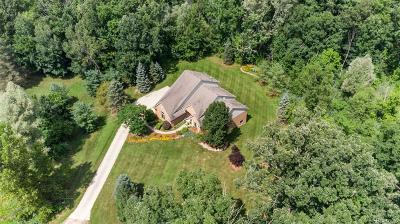 Addison Twp Single Family Home For Sale: 525 Lena Hill Drive