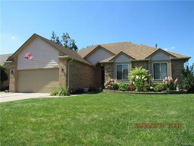 Chesterfield Twp Single Family Home For Sale: 53175 Cripple Creek Drive