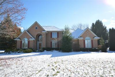 Northville Single Family Home For Sale: 17524 Rolling Woods Circle