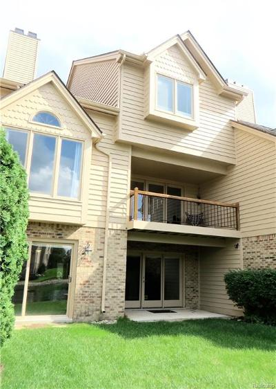 Northville Twp Condo/Townhouse For Sale: 18227 Blue Heron Drive E