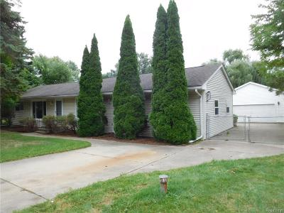 TROY Single Family Home For Sale: 219 Webb Drive