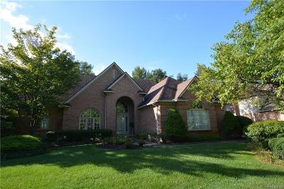 Novi Single Family Home For Sale: 46309 Cordoba Drive
