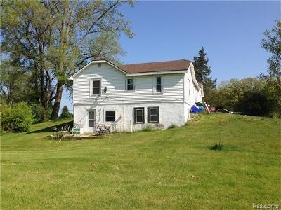 Independence Twp MI Single Family Home For Sale: $225,000