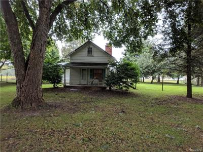 Lyon Twp Single Family Home For Sale: 56140 Nine Mile Road