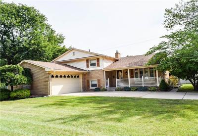 Allen Park Single Family Home For Sale: 10787 Seavitt Drive Drive