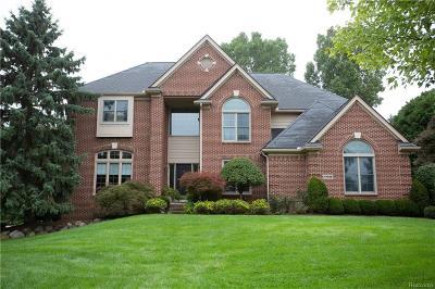 Single Family Home For Sale: 47056 Brooks Lane
