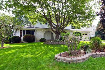 White Lake Single Family Home For Sale: 275 Lisa Circle