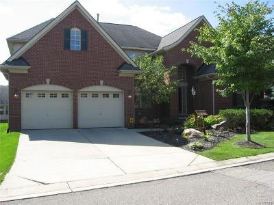 Novi Single Family Home For Sale: 41537 Twain Pl