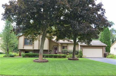 Commerce Twp Single Family Home For Sale: 4343 Kelsey Farm Drive
