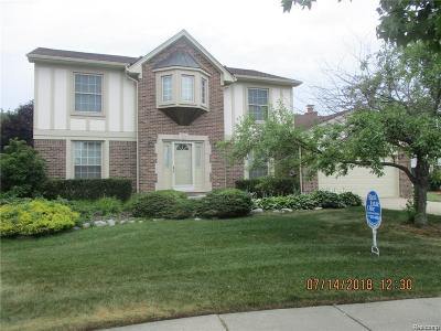 Novi Single Family Home For Sale: 25553 Keenan Court
