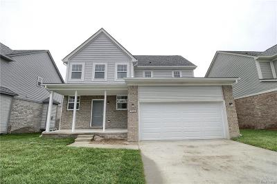 Chesterfield Twp Single Family Home For Sale: 47559 Viola Lane