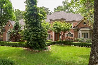Lake Orion, Orion Twp, Orion Single Family Home For Sale: 82 Kirksway Lane
