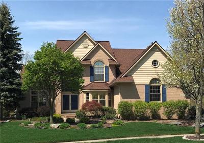 Novi Single Family Home For Sale: 30493 Bristol Circle Court