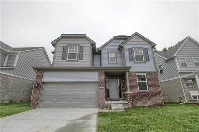 Chesterfield Twp Single Family Home For Sale: 47534 Viola Lane