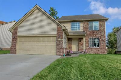 Romulus Single Family Home For Sale: 5999 Treetops Drive