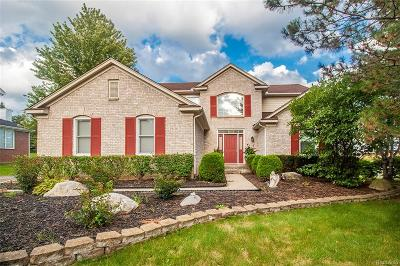 Northville Twp Single Family Home For Sale: 19130 Windridge Drive