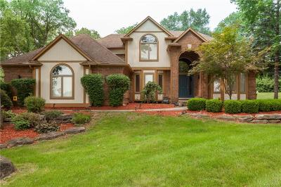 Commerce Twp Single Family Home For Sale: 4707 Driftwood Drive