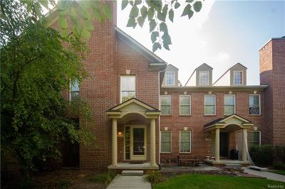 Canton Twp Condo/Townhouse For Sale: 137 Village Way