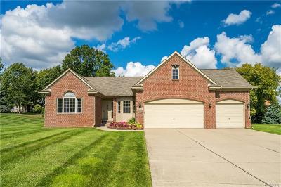 White Lake, White Lake Twp Single Family Home For Sale: 6681 Teluride Drive