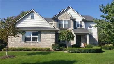 White Lake, White Lake Twp Single Family Home For Sale: 4596 S Quarry Creek Drive