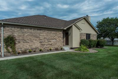 Macomb Twp Condo/Townhouse For Sale: 15235 Windmill Drive