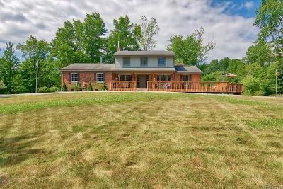 White Lake, White Lake Twp Single Family Home For Sale: 3281 Meadow Lane