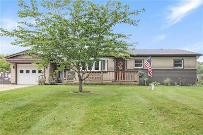 White Lake, White Lake Twp Single Family Home For Sale: 1070 Dolane