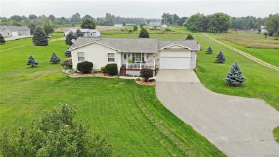 Brandon Twp Single Family Home For Sale: 1460 Connell Road