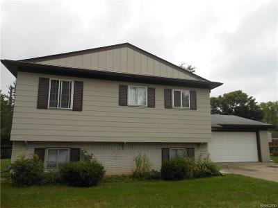 Farmington, Farmington Hills Single Family Home For Sale: 29693 Moran Street