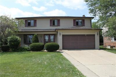 Brownstown Twp Single Family Home For Sale: 20569 Law Avenue