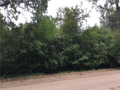 Huron Twp Residential Lots & Land For Sale: 27151 Romine