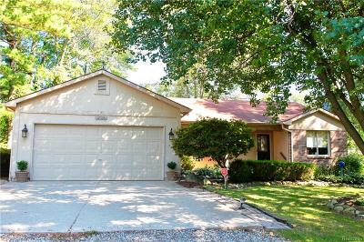 Lake Orion Single Family Home For Sale: 1397 Woodfield