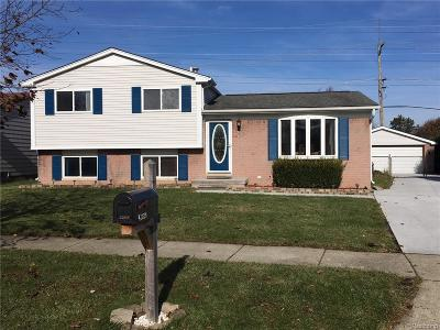 Canton Twp Single Family Home For Sale: 41936 Edenbrooke Drive