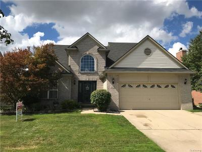 Southgate Single Family Home For Sale: 15578 Applewood Lane