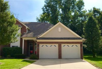 Sterling Heights Condo/Townhouse For Sale: 14258 Shadywood Drive