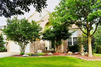 South Lyon Single Family Home For Sale: 802 Hidden Creek Drive