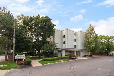 Plymouth Condo/Townhouse Sold: 770 Deer Street #205