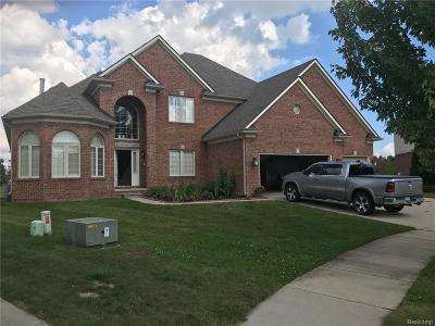 Clinton Twp Single Family Home For Sale: 18443 Swan Court